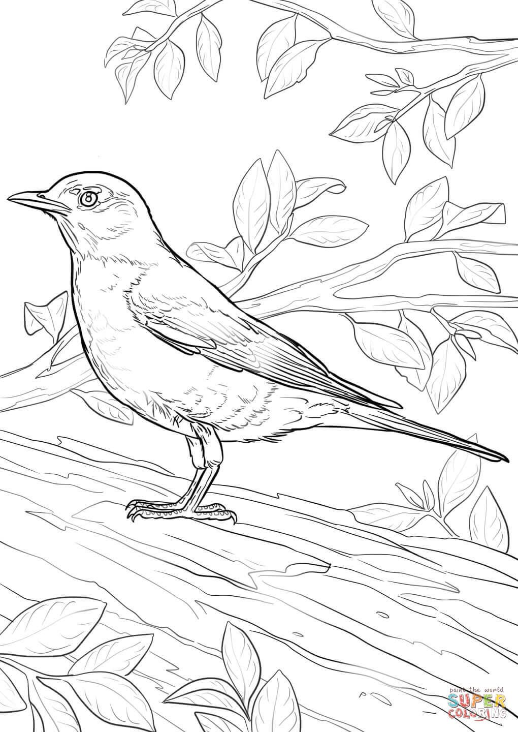 Click To See Printable Version Of New York State Bird Coloring