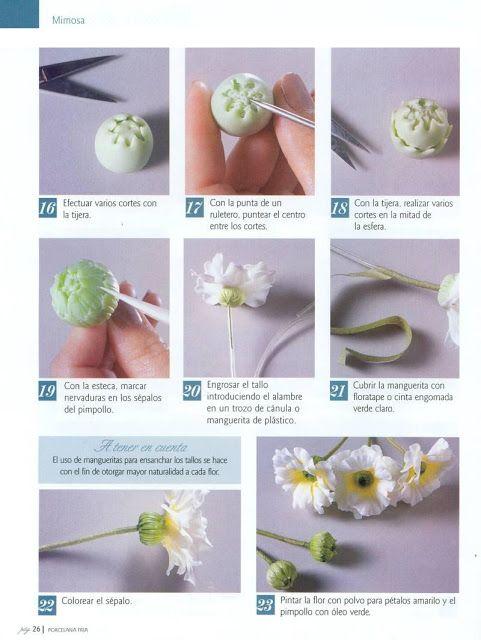 Todo Flores de Porcelana Fria: Mimosas Paso a Paso