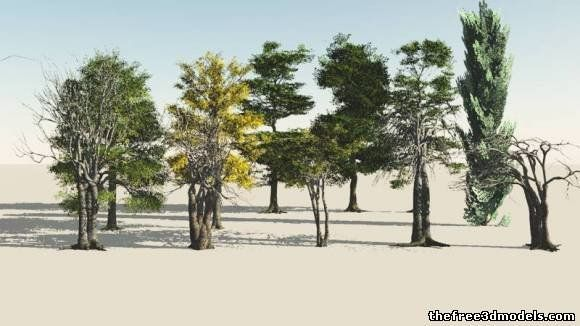 Plants 3D Models - Free 3D Plants download