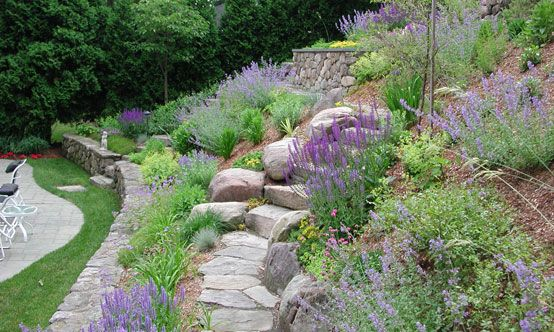 Landscaping On A Hillside Steep Slope Arlington Ma A Steep And Unmanageable Hillside Slope Converte Sloped Garden Landscaping With Rocks Landscaping A Slope