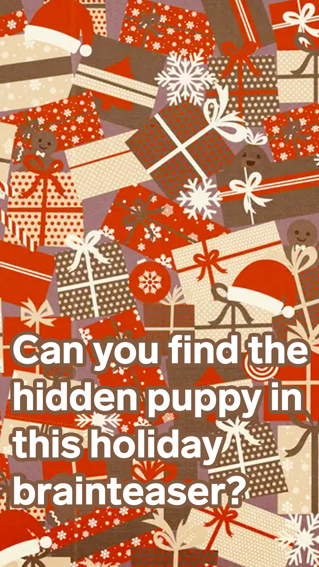 Can you find the hidden puppy in this holiday brainteaser