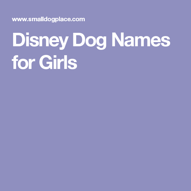 Take a good look at our list of cute and unique dog names and meanings for both male and female dogs and choose a perfect name for your little puppy