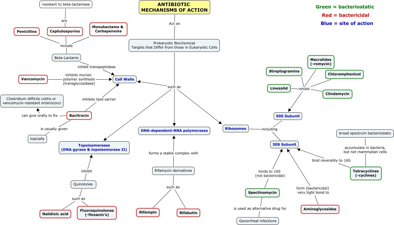 Antibiotic Mechanisms Of Action Antibiotics Pharmacology Pharmacology Medical Knowledge