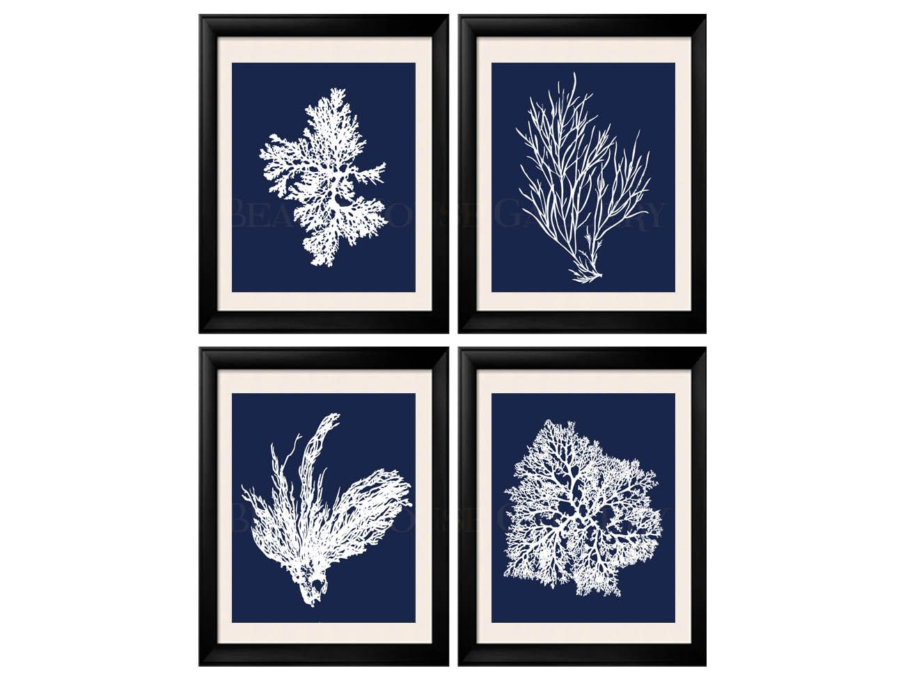 Coral print nautical decor white blue sea coral print set of four