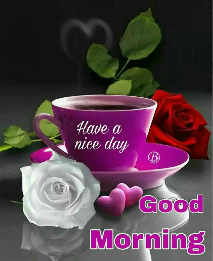 Good Morning Good Morning Good Morning Greetings Good Morning Images Flowers