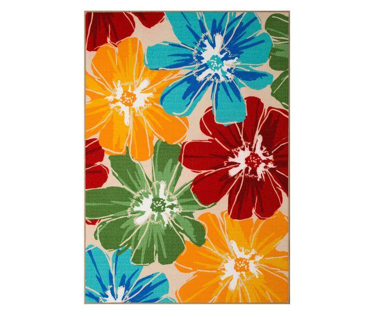 big lots outdoor rugs Anemone Multi Color Floral Patio Rug, (6'7