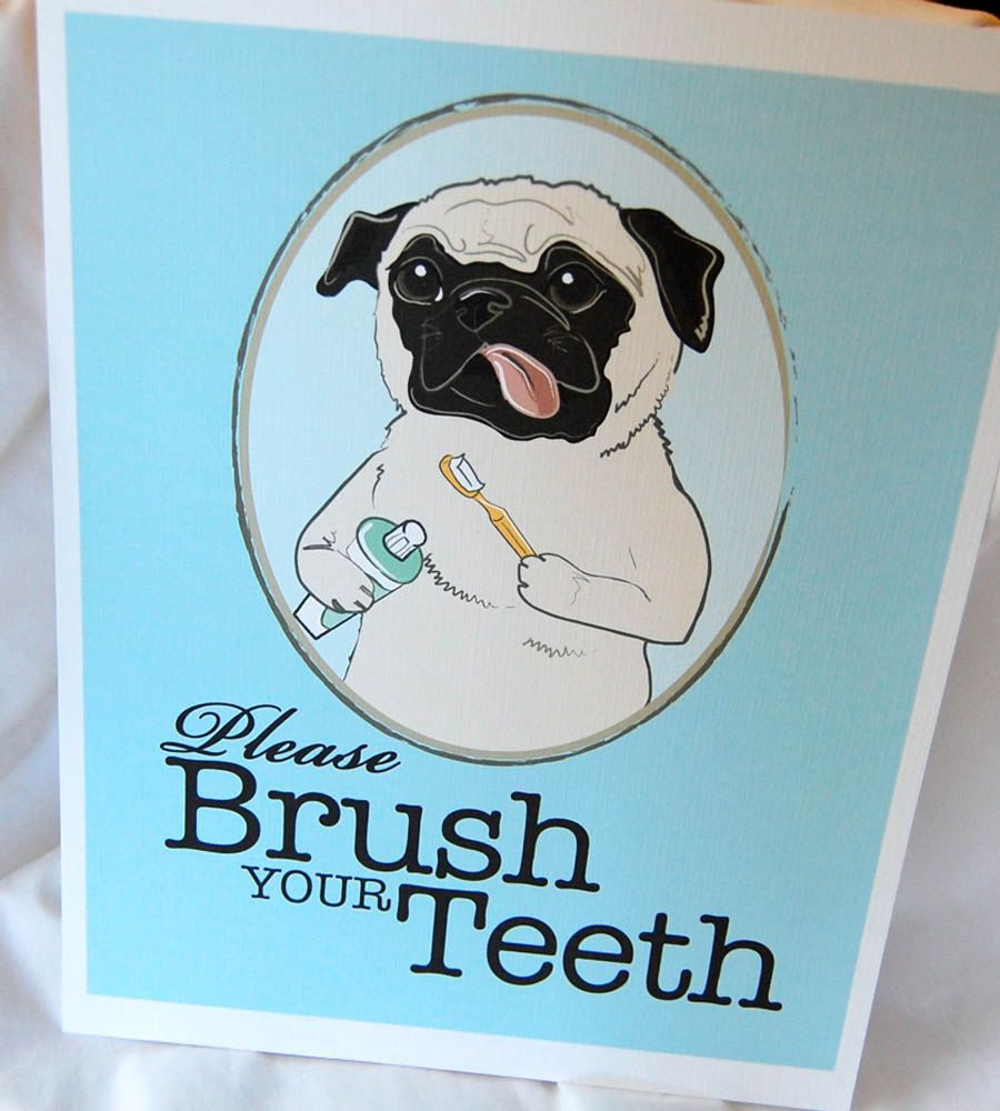 Brush Your Teeth Pug 8x10 Eco Friendly Print Pugs Not Drugs