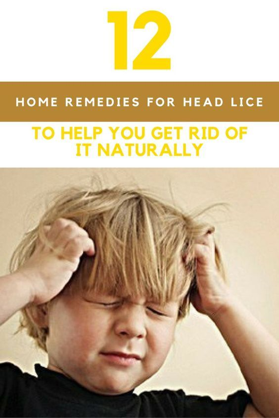 12 Home Remedies For Lice To Remove It Naturally   Lice ...