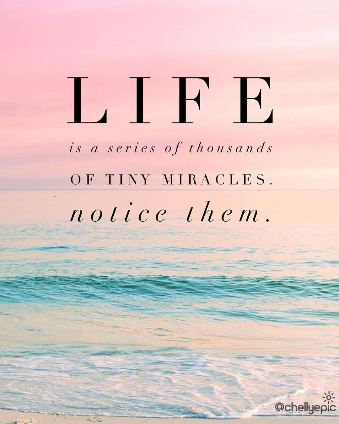 Life Is A Series Of Thousands Of Tiny Miracles Notice Them Chellyepic Miracle Quotes Words Positive Quotes Life Is a Miracle