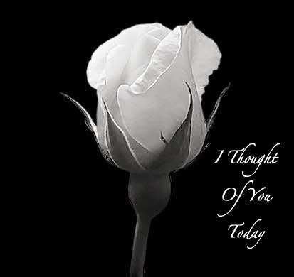 Leo Julio S Image Flower Quotes I Thought Of You Today Love Quotes