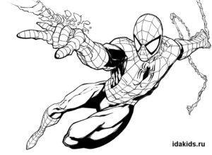 Раскраска Человек паук: распечатать бесплатно ТОП 30 ...