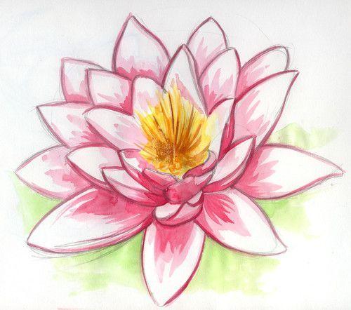 Dibujo de flor de loto #dibujo #vegetationDessin | Dessin fleur de ...