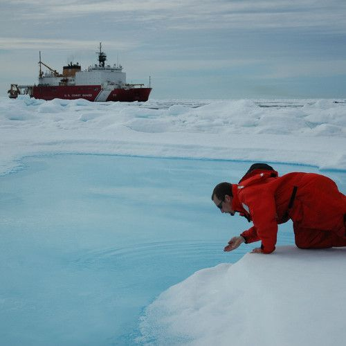 Canadau0027s Plans For the Arctic Donu0027t Include the Environment - risk plans