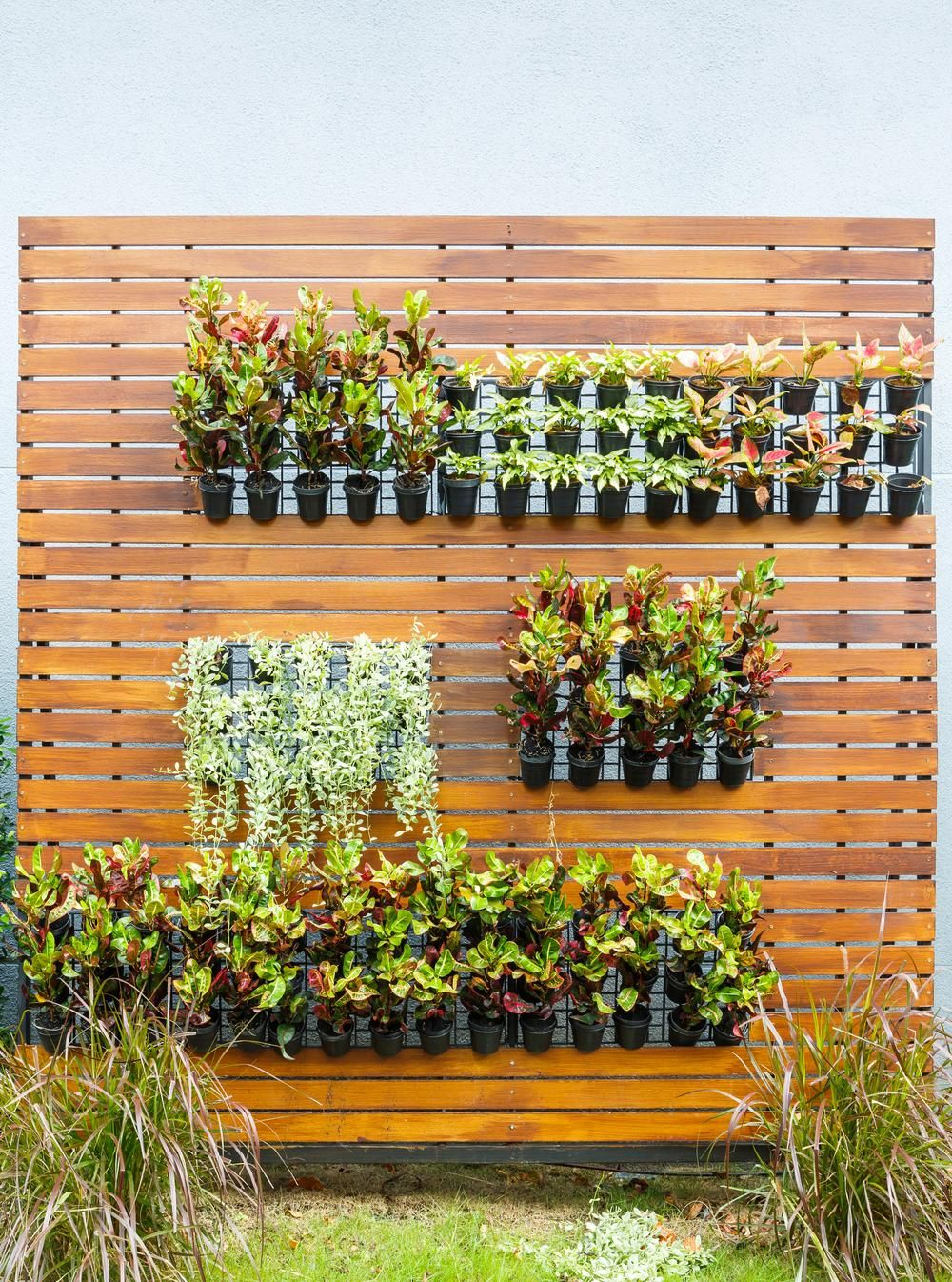 Vertical gardening or living walls are a great alternative ...