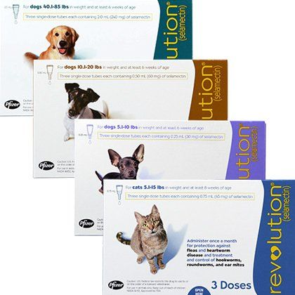Revolution For Cats Dogs Free Shipping 1800petmeds Pet Meds Cat Hug Love Your Pet
