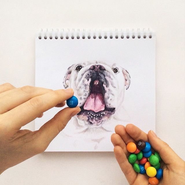 Russian Illustrator Turns Famous Instagram Dogs Into Drawings - see more on blog