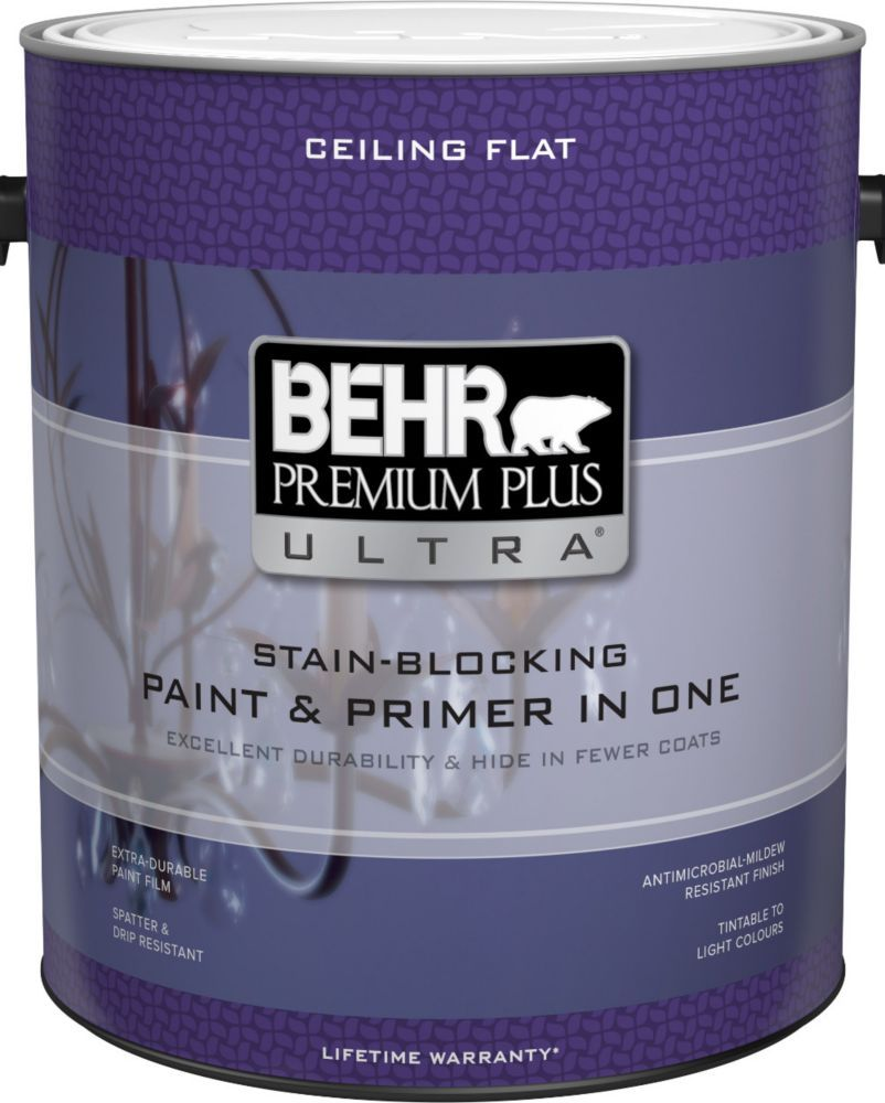 Premium Plus Ultra Stain Blocking Ceiling Paint Coverage 250 400 Sq Ft Per Gallon Sheen Flat Finish Matte Non Reflect Durable Paint Painted Ceiling Stain