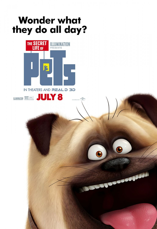 The Secret Life Of Pets Secret Life Of Pets Secret Life Pets Movie