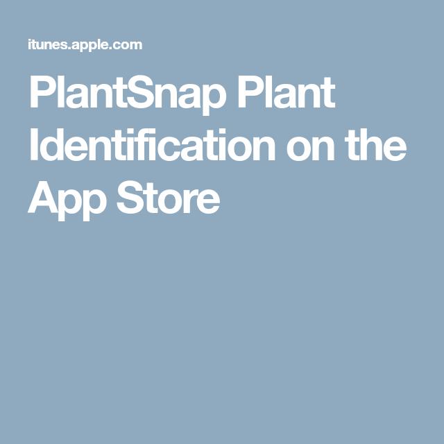 PlantSnap Plant Identification on the App Store Identify