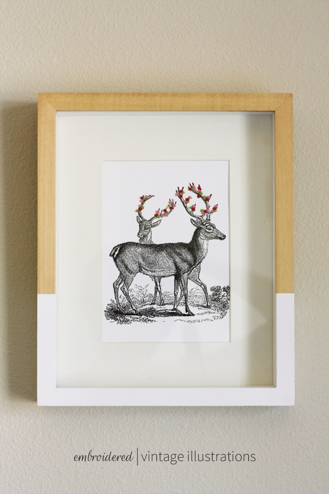 embroidered vintage illustrations
