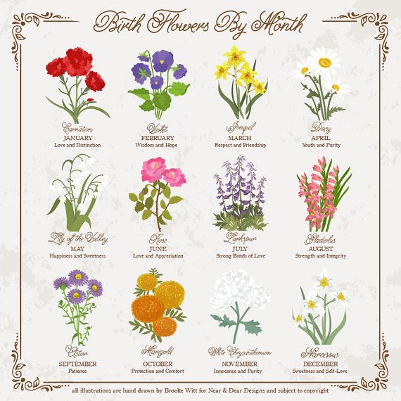 October Birth Month Flower Personalized Birthday Gift Birth Etsy Birth Flower Tattoos Birth Month Flowers Month Flowers