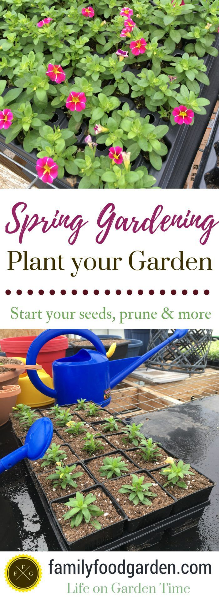 Spring Gardening Tips and To Do Lists Organic gardening
