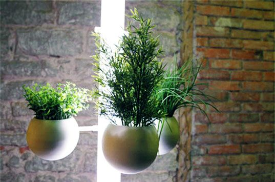 Living lamp provides green indoor gardening space indoor sustainable design green gardening apartment gardening green indoors your way to coway workwithnaturefo
