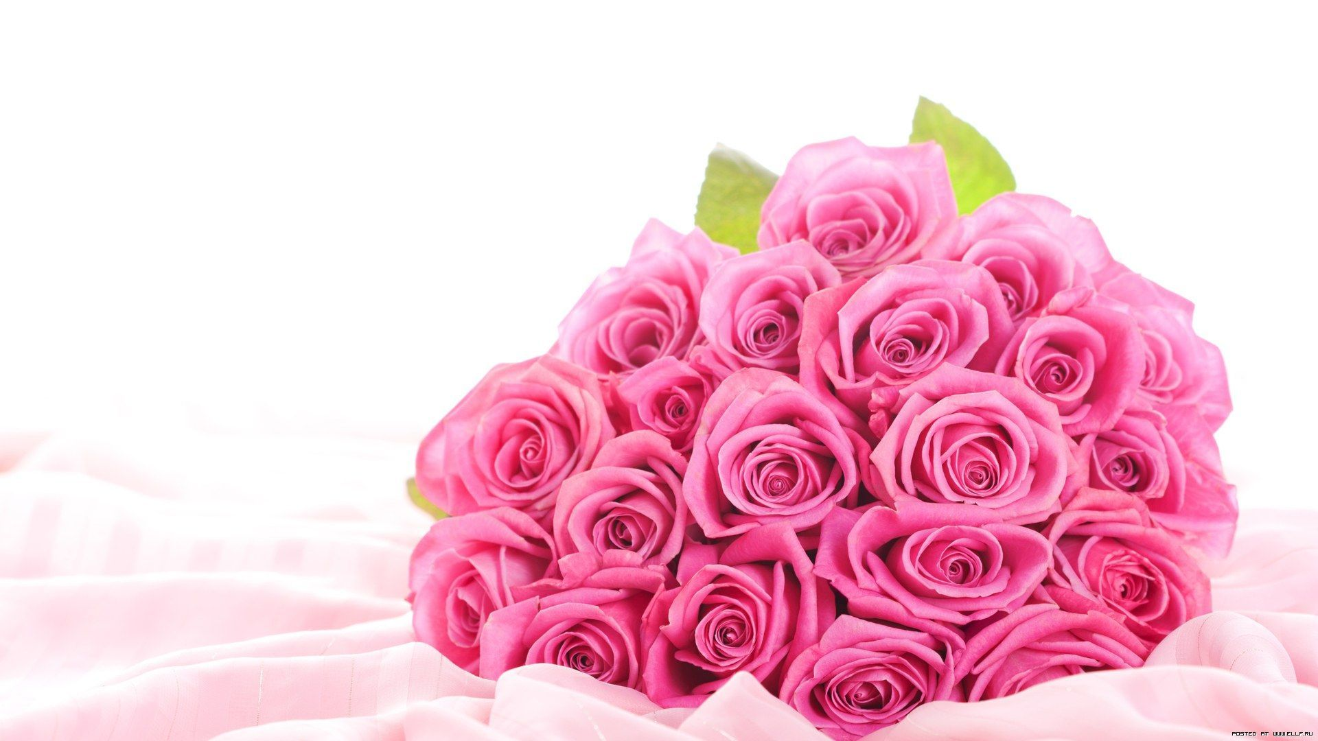 Roses flowers wallpaper etamemibawa roses flowers wallpaper izmirmasajfo Image collections
