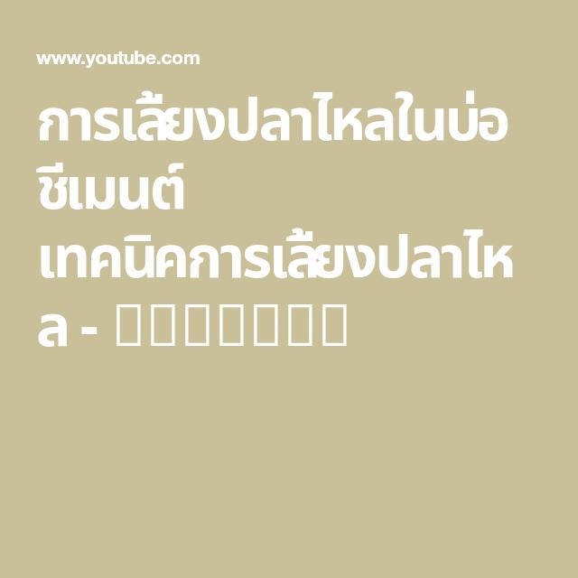 การเล ยงปลาไหลในบ อช เมนต เทคน คการเล ยงปลาไหล Youtube กบ