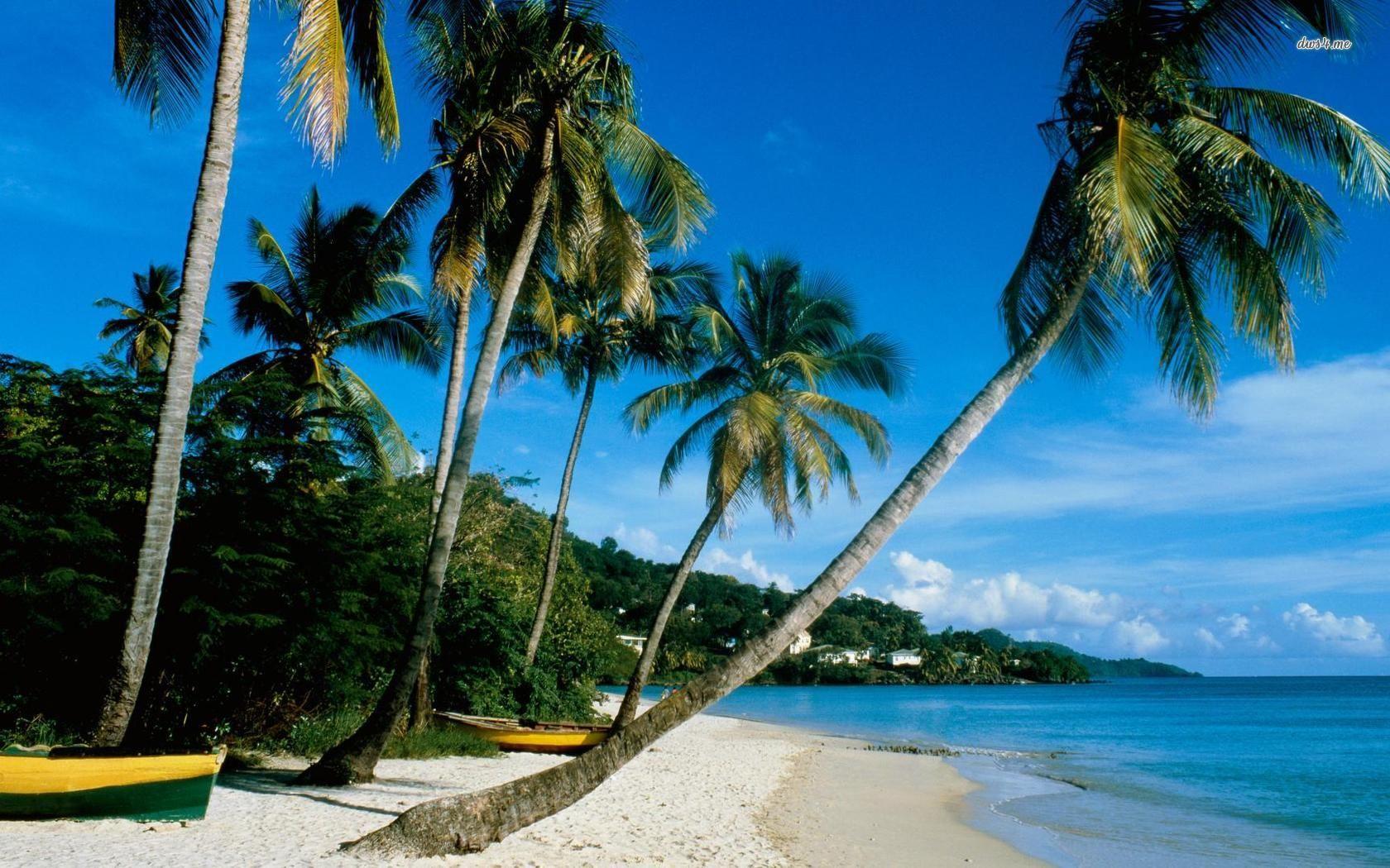 Playas coralinas, aguas transparentes y cocoteros... Así son los Cayos en Cuba!!!