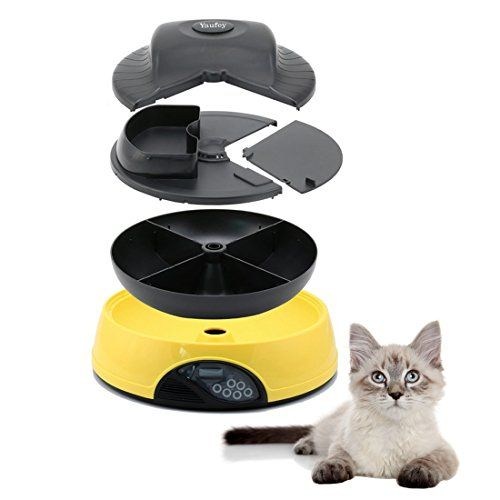hellow dog top for manual large pet feeders best breeds timer feeder honeyguaridan review with automatic
