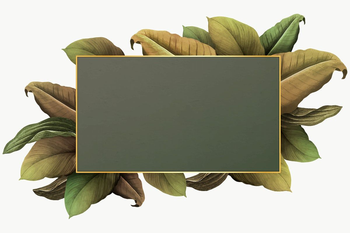 Download Premium Png Of Green Leaves With Golden Rectangle Frame Design Frame Design Design Design Element