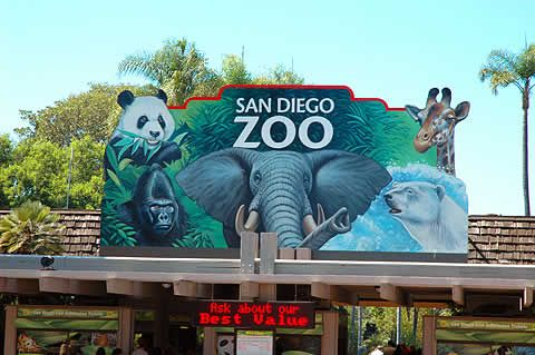 San Diego Zoo .. .Going here this weekend!! :)