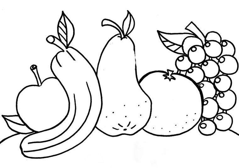 Coloriage Les Fruits.Gabarits Dessins Coloriages Fruits Divers Farm Activities