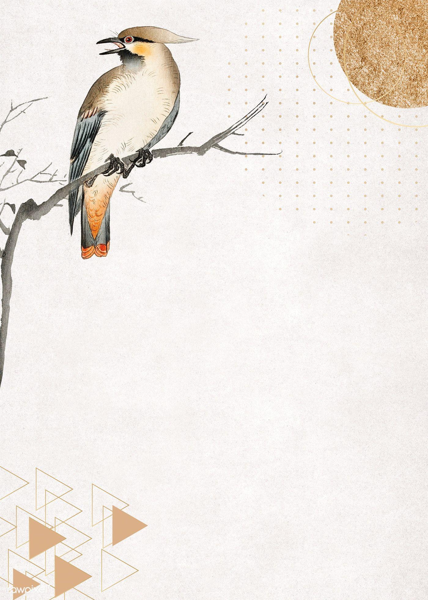 Download Premium Illustration Of Bird On A Branch Frame Design 1219278 Frame Illustration Collage Background Frame Design