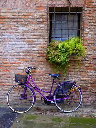 Adorable purple #bike  #bicycle #bicycles