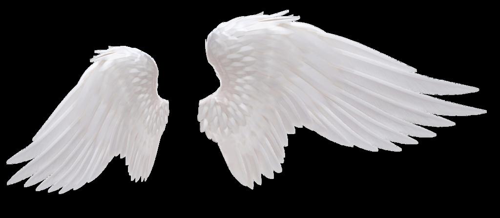 Angel Wings 02 By Hz Designs Angel Wings Png Wings Png Black Angel Wings