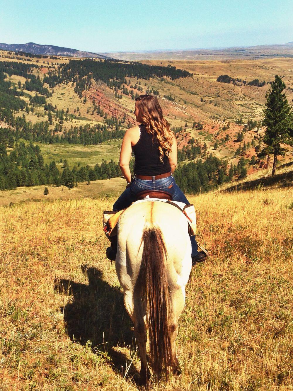 Eatons ranch wy dude ranch eaton ranch