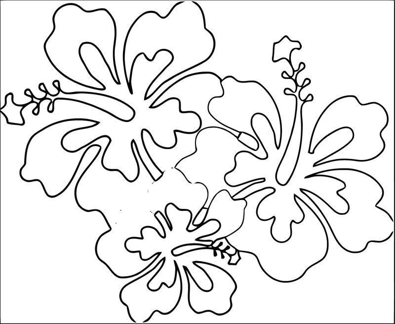 Hawaii Flower Coloring Page 2 Flower Coloring Pages Printable Flower Coloring Pages Fruit Coloring Pages
