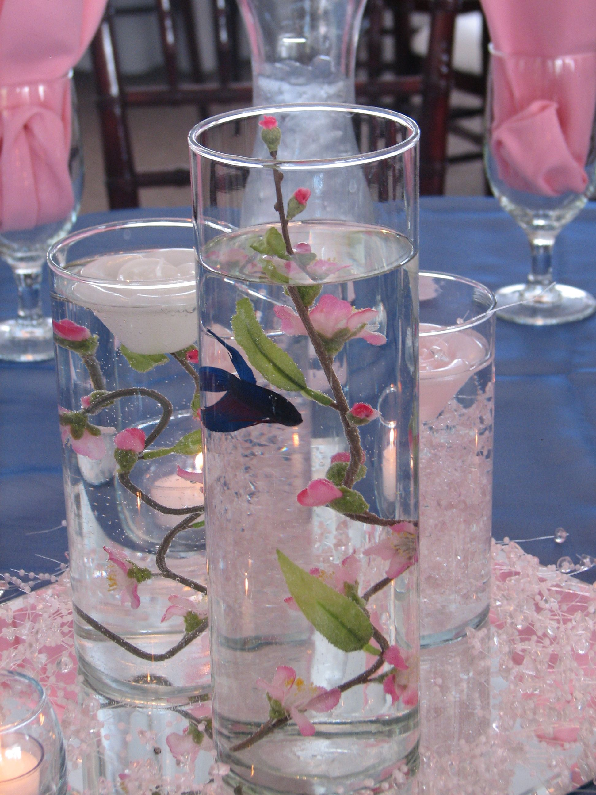 Beta fish in cylinder for our bathroom kari fish and for Fish centerpieces wedding receptions