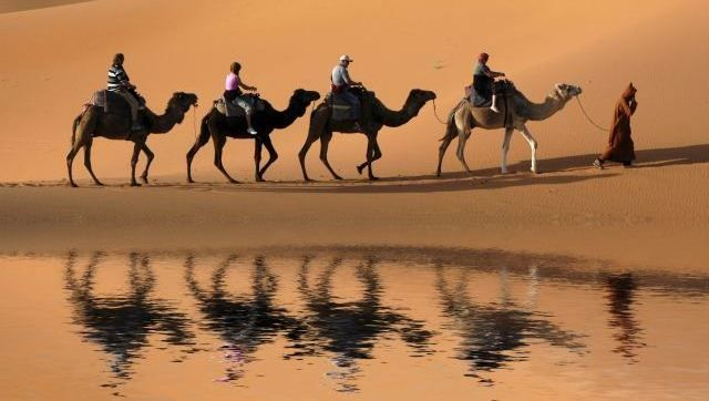 #egypt #travel
