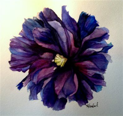 Black Peony Poppy By Twingles42 Watercolor Painting Still Life