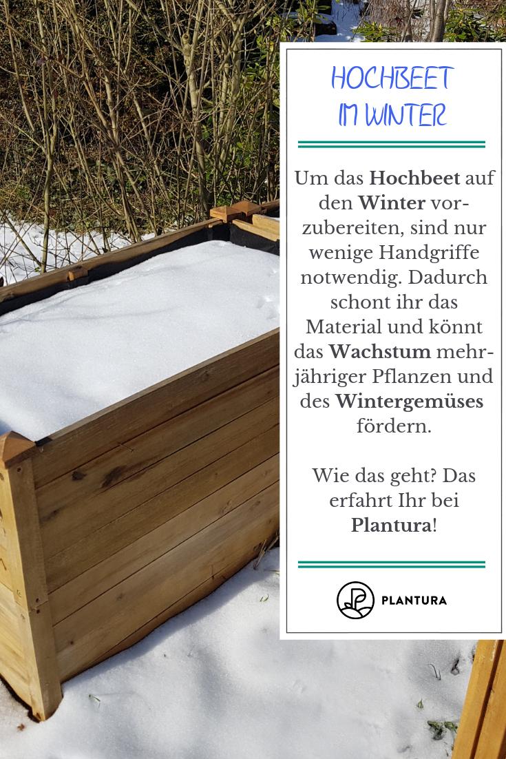 Hochbeet Im Winter Nutzen Ideen Tipps Hochbeet Garten Pflanzen