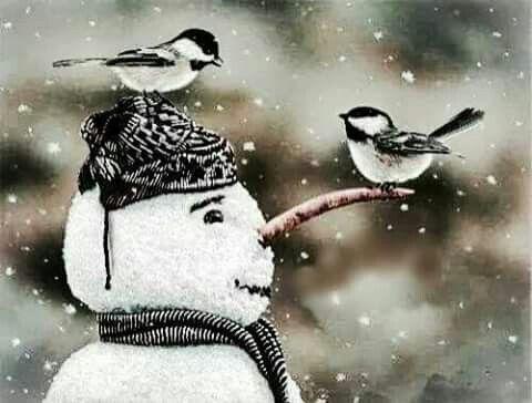 Birds and Thé snowman