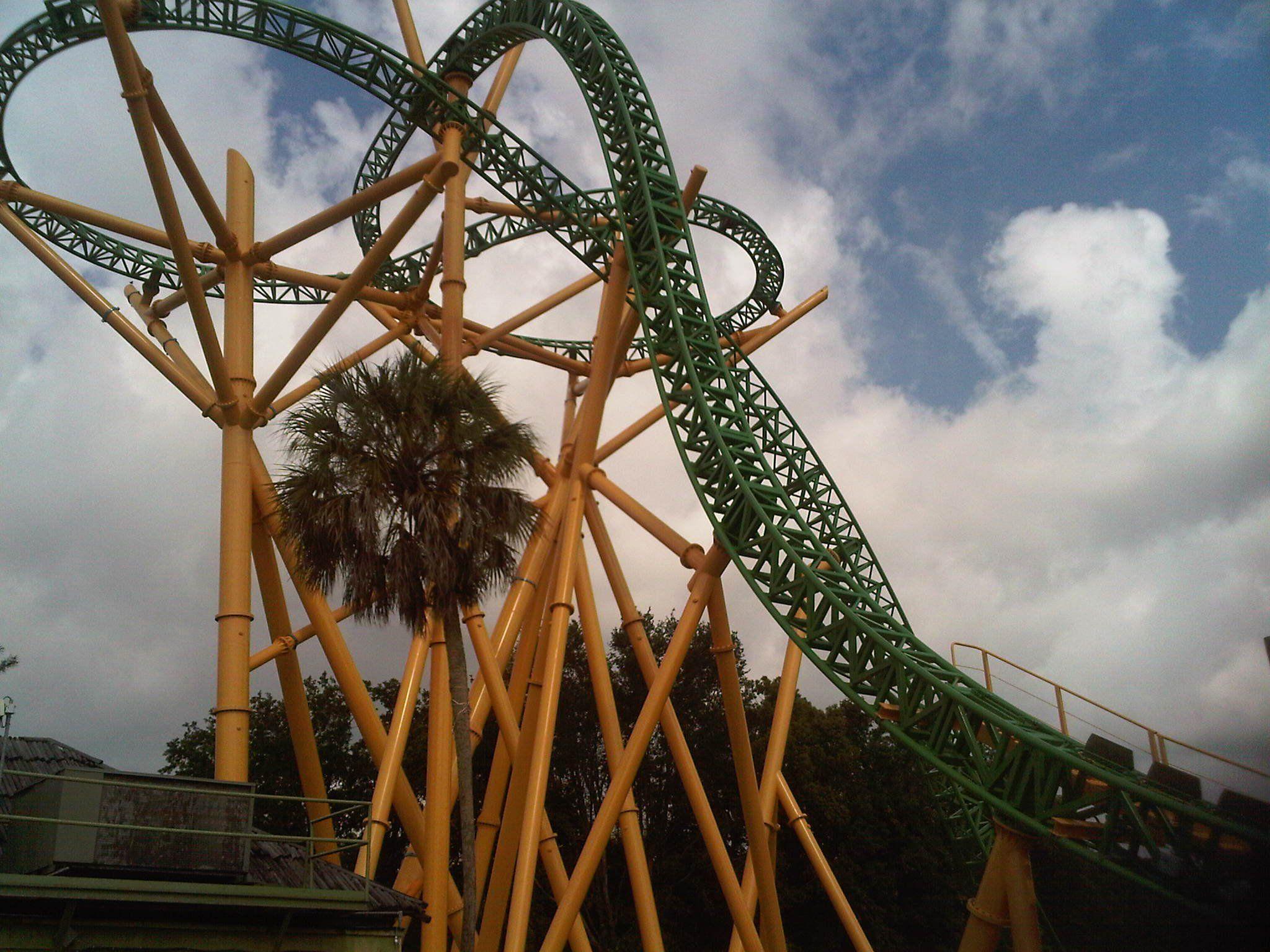 Cheetah Hunt at Busch Gardens Tampa Bay! | Tampa Bay Attractions ...