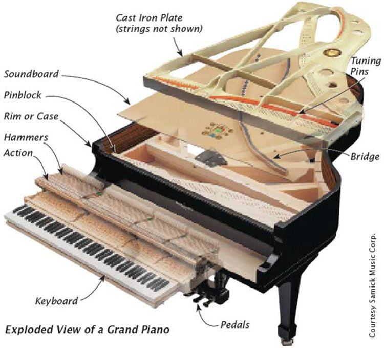 labelled diagram grand piano google search piano pinterest rh pinterest com grand piano parts diagram piano music diagram