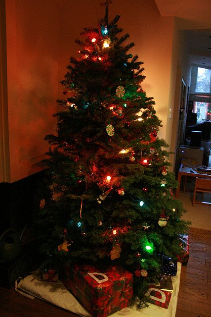 Dimming The Ambient Lights To See The Christmas Tree Lights