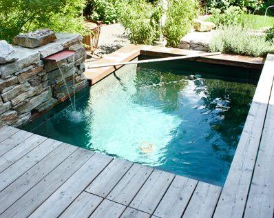 projekt_tauchbecken4 Mehr Garten Pinterest Pond, Gardens and