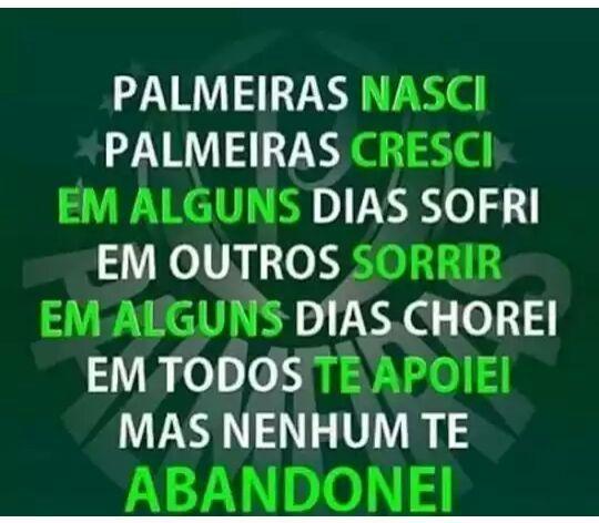 Pin De Fatima Silva Em Palmeiras Palmeiras Fotos Do