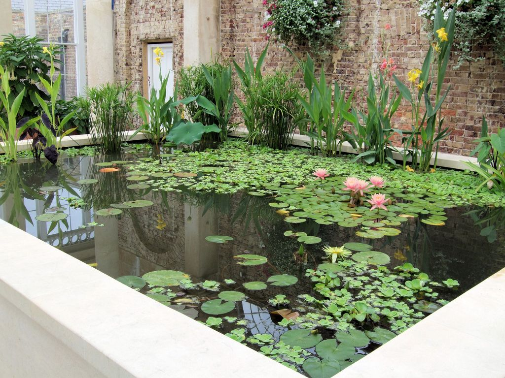 Estanque jardin buscar con google jardin aquatic for Estanques artificiales para jardin